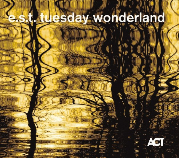 tuesday wonderland est