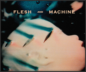 daniel_lanois_flesh_and_machine