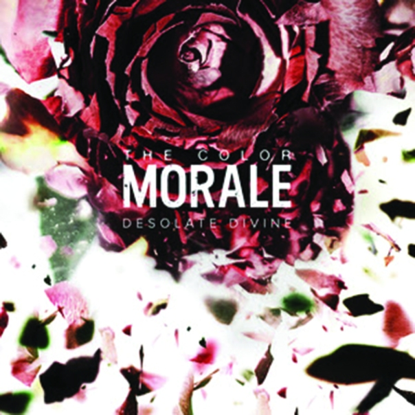 thecolormorale_artwork