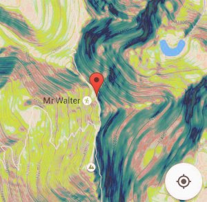 mr-walter-where