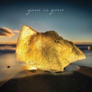 gone-is-gone-echolocation
