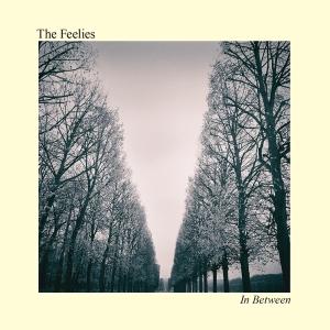 the-feelies-in-between
