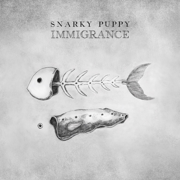 snarky puppy immigrance