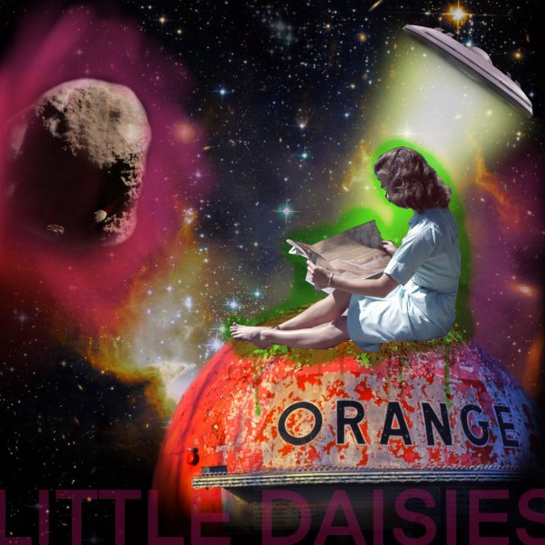 little daisies orange